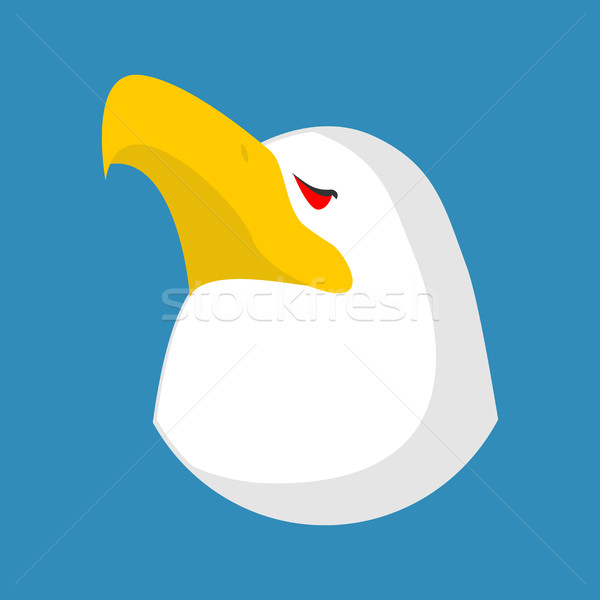 Bald eagle head isolated. Bird an eagles face on white backgroun Stock photo © MaryValery