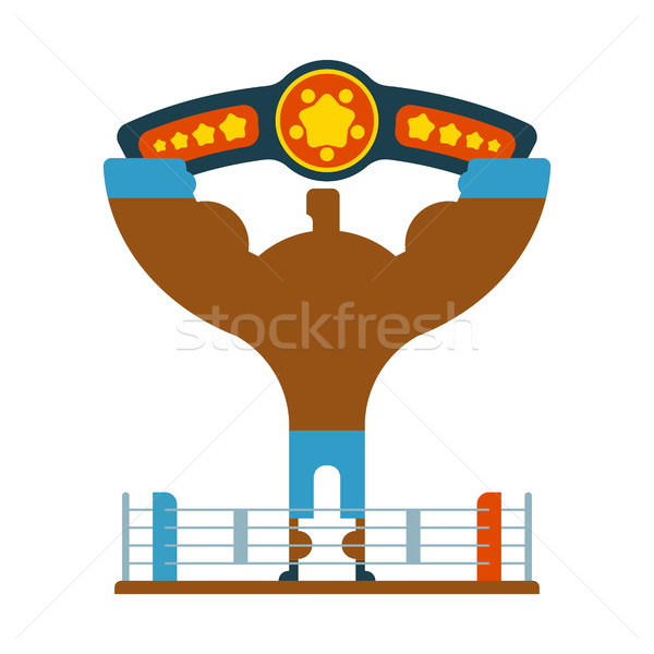 Champion Boxer winner hands up. Winning tournament. Championship Stock photo © MaryValery