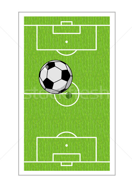 Football field and ball. Soccer game. Game ball high above groun Stock photo © MaryValery
