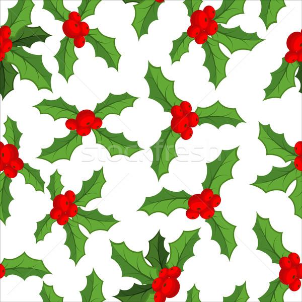 Maretak traditioneel christmas plant feestelijk Stockfoto © MaryValery