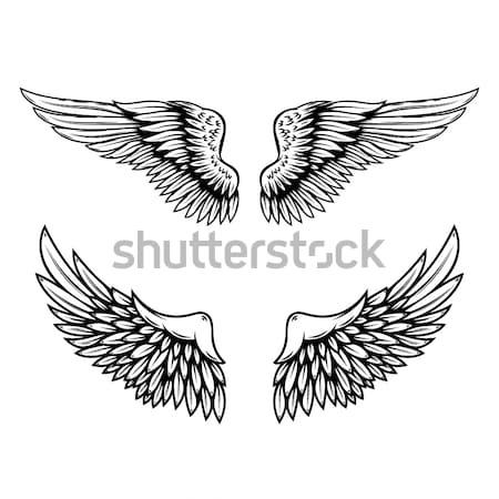 Сток-фото: набор · Vintage · вектора · крыльями · изолированный · белый