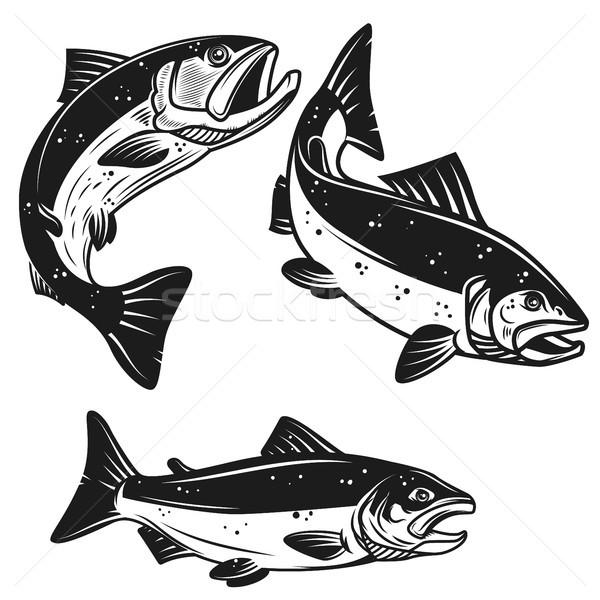Ayarlamak somon balık simgeler yalıtılmış beyaz Stok fotoğraf © masay256
