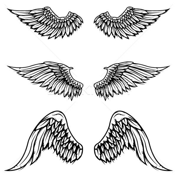 Stock fotó: Szett · klasszikus · vektor · szárnyak · izolált · fehér