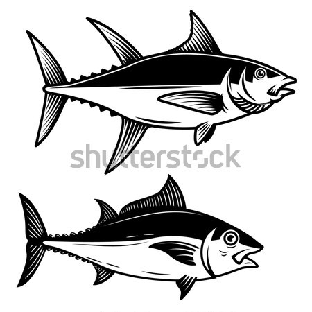 Set of tuna fish icons isolated on white background. Design elem Stock photo © masay256