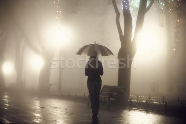 Lány esernyő éjszaka sikátor fotó zaj Stock fotó © Massonforstock