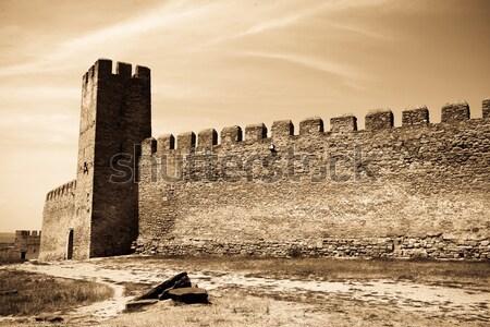 Kale Ukrayna Bina inşaat duvar dünya Stok fotoğraf © Massonforstock