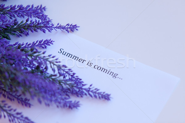 Paper with words summer is coming  Stock photo © Massonforstock