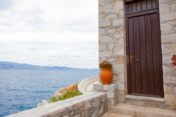 Fotó aranyos edény virágok ajtó csodálatos Stock fotó © Massonforstock
