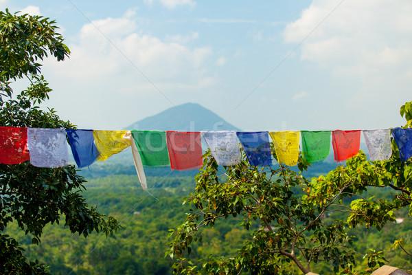Rezando banderas color Sri Lanka diseno Foto stock © Massonforstock