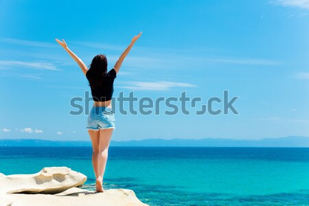 Hermosa pie maravilloso piedra costa Foto stock © Massonforstock