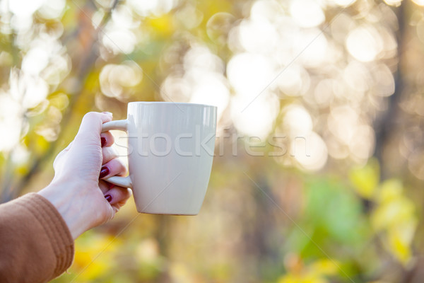 Belle Homme main tasse café Photo stock © Massonforstock