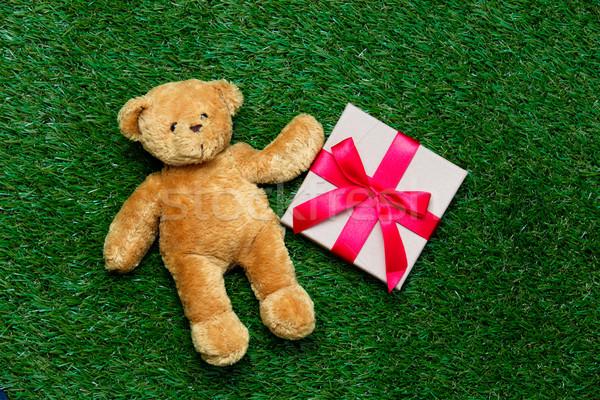 Regalo orsacchiotto rosso cute bella verde Foto d'archivio © Massonforstock