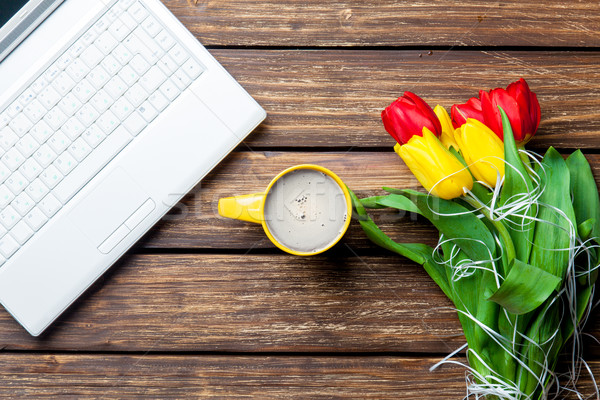 Tulipes portable tasse café merveilleux Photo stock © Massonforstock