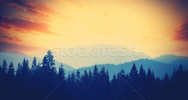 View on sunset at winter mountains Tatry, Poland Stock photo © Massonforstock
