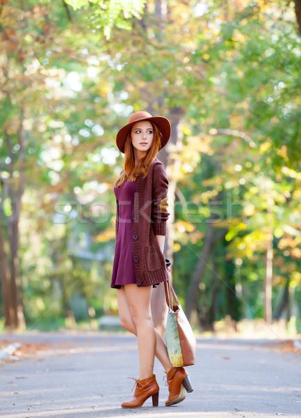 Fotó gyönyörű fiatal nő áll csodálatos ősz Stock fotó © Massonforstock