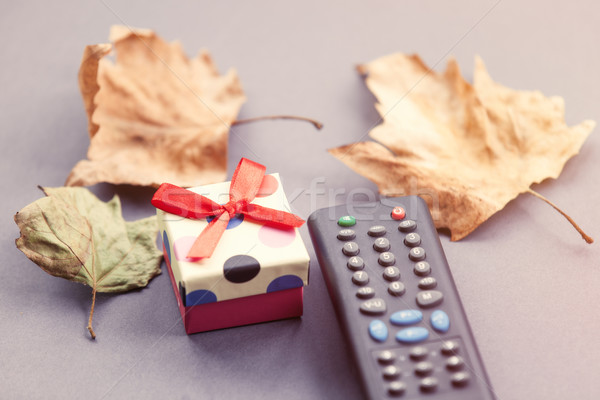TV remote control and autumn leafs Stock photo © Massonforstock