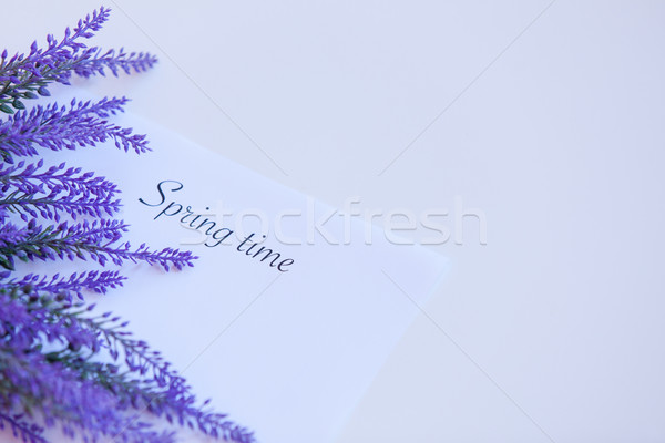 Paper with words Spring time  Stock photo © Massonforstock