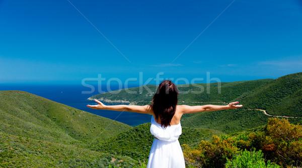 Gyönyörű fiatal nő áll csodálatos hegyek tenger Stock fotó © Massonforstock