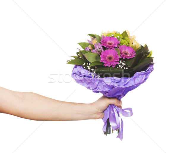hand with a flowers isolated on white Stock photo © Massonforstock