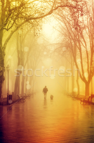 Stock photo: Walking men with dog in fog