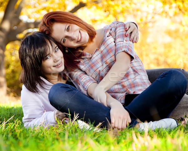 Stok fotoğraf: Iki · güzel · genç · kız · yeşil · ot · park · kadın