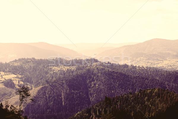 мнение гор фото старые стиль Сток-фото © Massonforstock