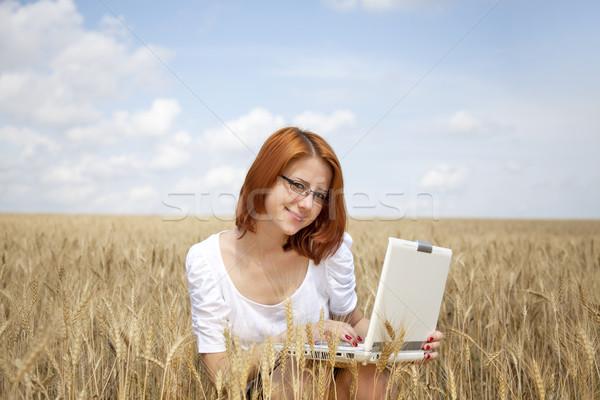 Stockfoto: Jonge · onderneemsters · witte · werken · notebook · tarwe
