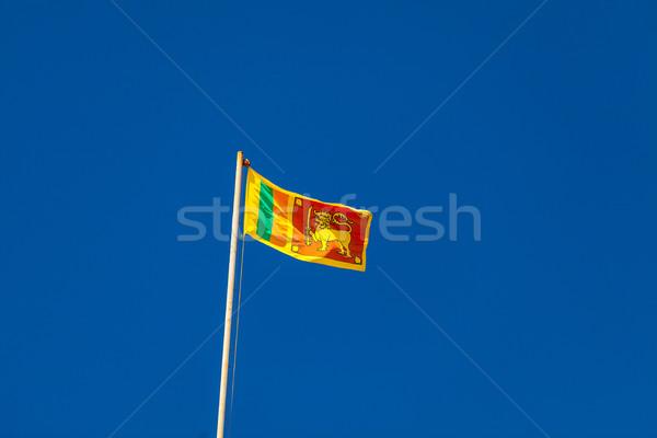 Sri Lanka flag  Stock photo © Massonforstock