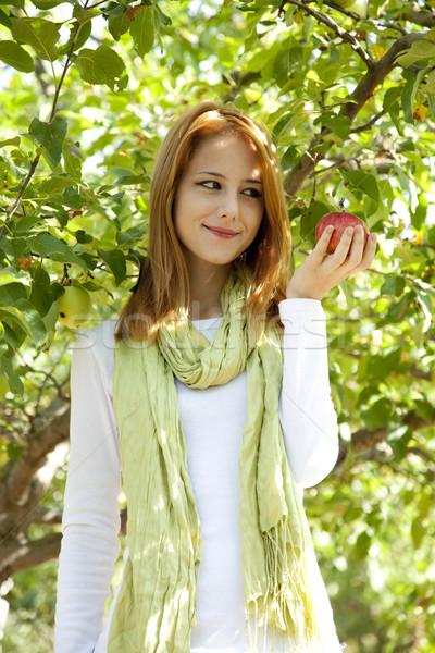 Stock fotó: Gyönyörű · fiatal · vörös · hajú · nő · nő · áll · almafa