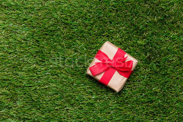 Czerwony mały szkatułce wiosną zielona trawa trawnik Zdjęcia stock © Massonforstock