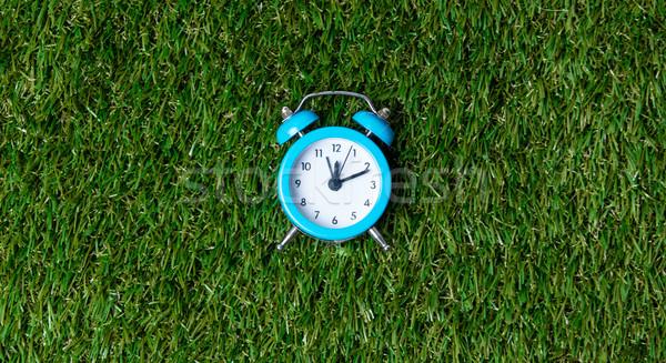 Blue little retro alarm clock on green grass background, above v Stock photo © Massonforstock
