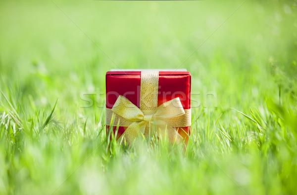 現在 草で覆われた 草 自然 デザイン 歳の誕生日 ストックフォト © Massonforstock