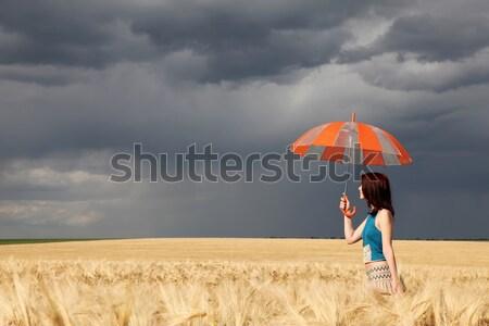 ストックフォト: コラージュ · 写真 · 少女 · 傘 · 嵐 · 麦畑