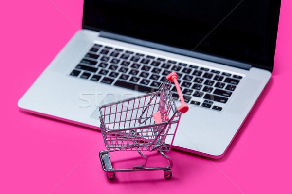 Gyönyörű bevásárlókocsi hideg laptop csodálatos rózsaszín Stock fotó © Massonforstock