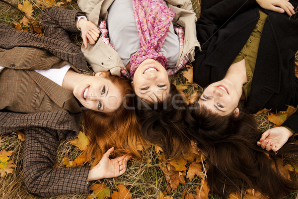Three girls in the autumn park. Stock photo © Massonforstock