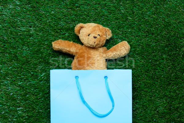 teddy bear in shopping bag Stock photo © Massonforstock