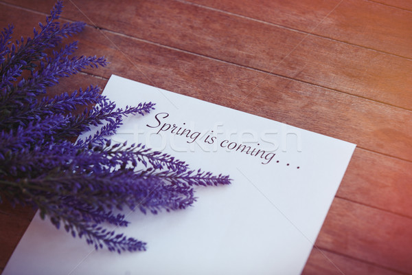 Paper with words Spring time and flower Stock photo © Massonforstock