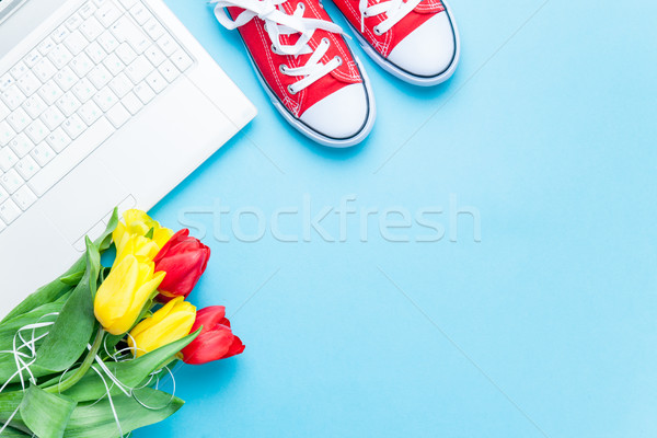 bunch of tulips, gumshoes and laptop on the wonderful blue backg Stock photo © Massonforstock