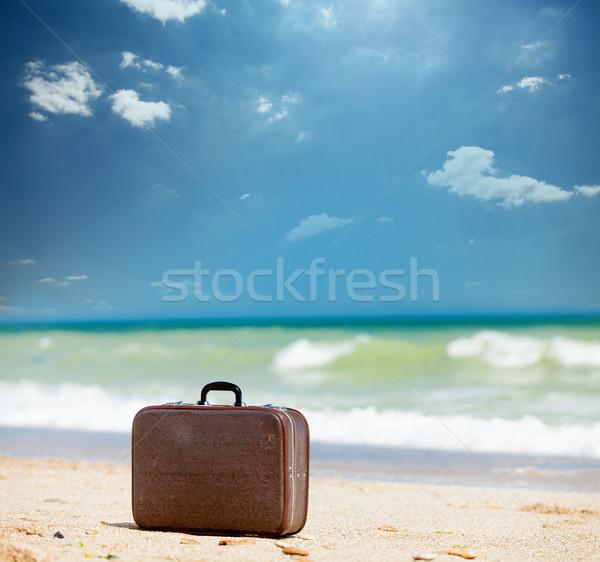 Foto belo marrom mala maravilhoso ensolarado Foto stock © Massonforstock