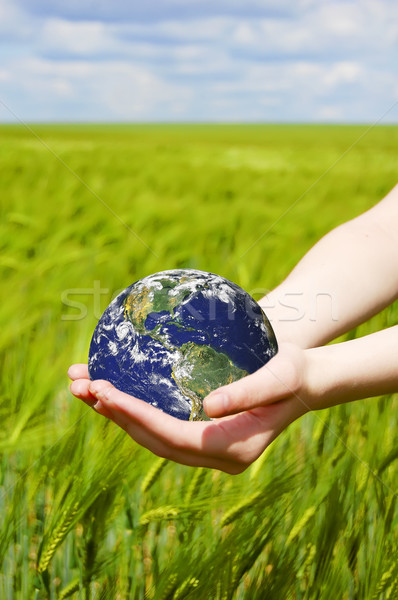 Beautiful female hand holding the Earth  Stock photo © Massonforstock
