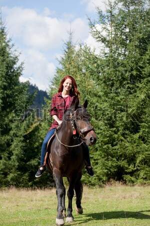 Hermosa maravilloso caballo naturales forestales Foto stock © Massonforstock