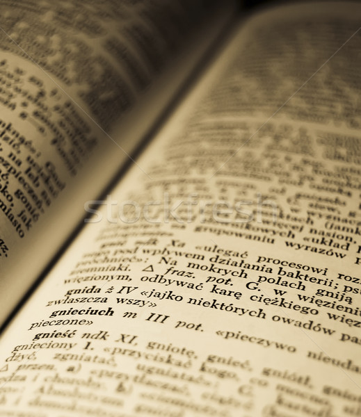 Old Polish dictionary. Photo in old image style.  Stock photo © Massonforstock