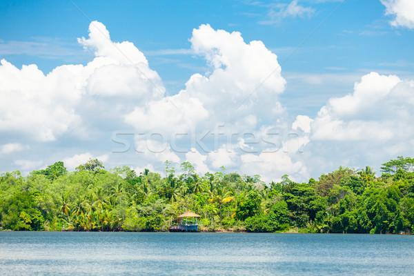 Trópusi part zöld pálmafák tenger oldalnézet Stock fotó © Massonforstock