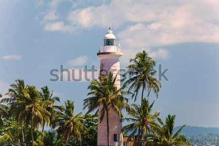 Sri Lanka 26 2016 belle phare palmiers Photo stock © Massonforstock