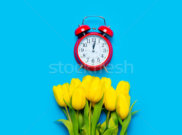 bunch of yellow tulips and beautiful alarm clock on the wonderfu Stock photo © Massonforstock