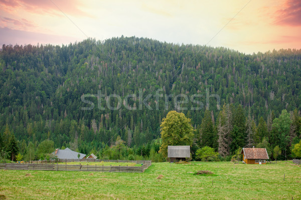 photo of cute little village near forest and mountain on the won Stock photo © Massonforstock
