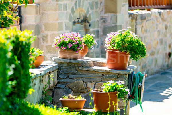 photo of cozy part of street full of flowers in pots and plants  Stock photo © Massonforstock