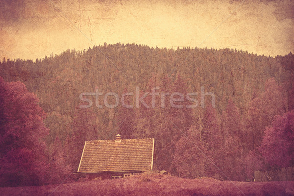 Old house in Ukrainian Carpathian  Stock photo © Massonforstock