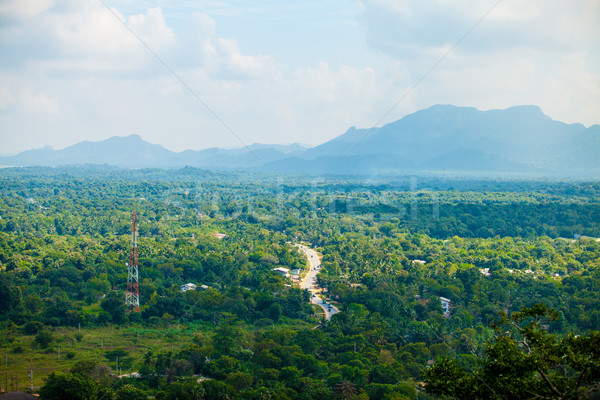 Sri Lanka tropikalnych lasu góry niebo trawy Zdjęcia stock © Massonforstock