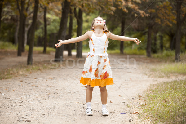 Child in the begin of the fall. Stock photo © Massonforstock